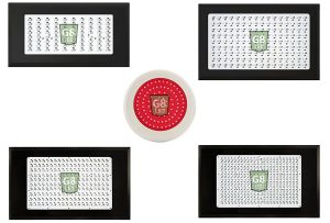 Best LED grow lights - G8LED grow lights