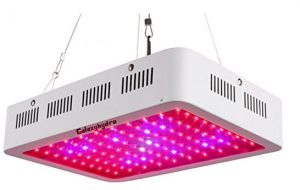 Best LED grow lights - Galaxyhydro 300W