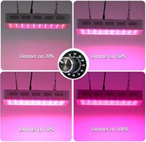 Best LED grow lights - Galaxyhydro 300W dimmable