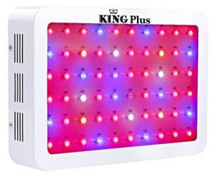Best LED grow lights - King Plus grow lights