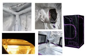 Best marijuana grow tents -Apollo grow tents-features