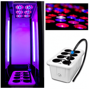 SuperLocker 3.0 LED flowering chamber