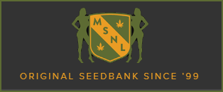 MSNL (Marijuana Seeds nl) logo
